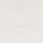 Лилия-белая-MBP-5142-3