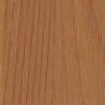 Ольха темная Р21035-01