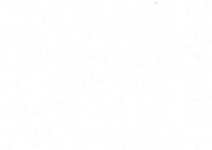 DW-101-6T Белый