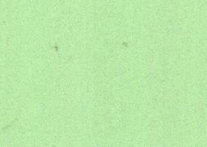 DW-302-6T Салатовый