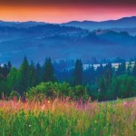Foggy summer panorama of the Carpathian mountains.